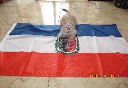 Bandeira do La Araucania