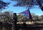 Bandera de Tibet