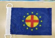 Bandera de Unión Internacional Paneuropea