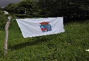 Bandera de Llanera