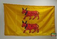 Bandera de Béarn