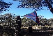 Bandiera di Tibet