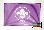 Bandera de Scouts