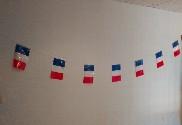 Banderines de plástico Francia 50m